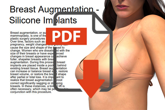 Descargas PDF